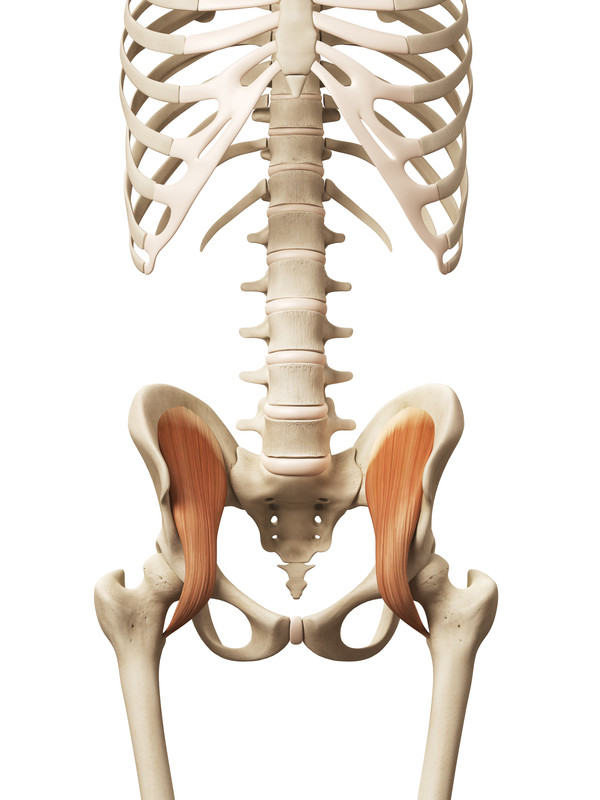 Tight Hip Flexors-The Source of Your Back or Hip Pain? - Orthowell ...
