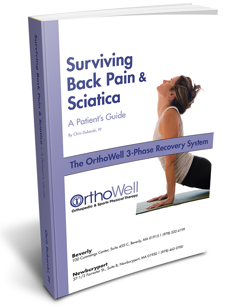 Surviving Back Pain_3D