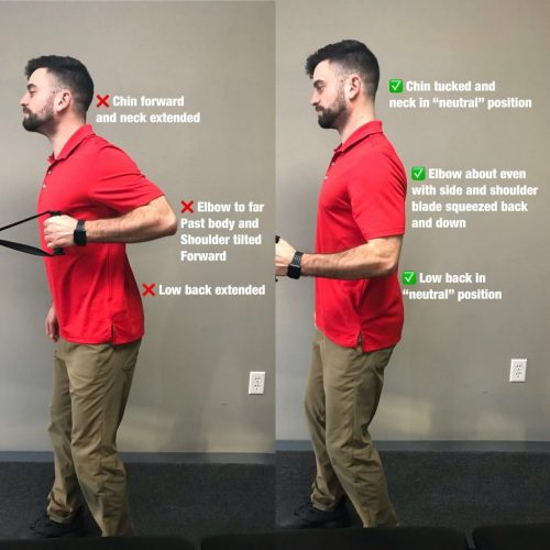 standing cable row exercises